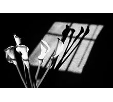 Shadows of PEACE Photographic Print