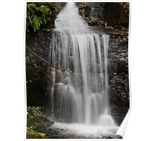 WATERFALL IN THE CASCADES Poster