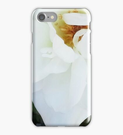 Wild Rose  iPhone Case/Skin