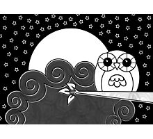 Whoot Owl Photographic Print