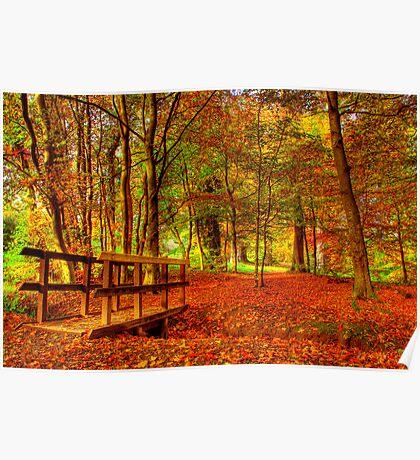 The Autumn Walk Poster