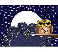 Night Owl Photographic Print