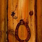 Spanish Door by Denise Martin