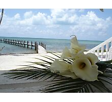 Wedding in the Keys Photographic Print