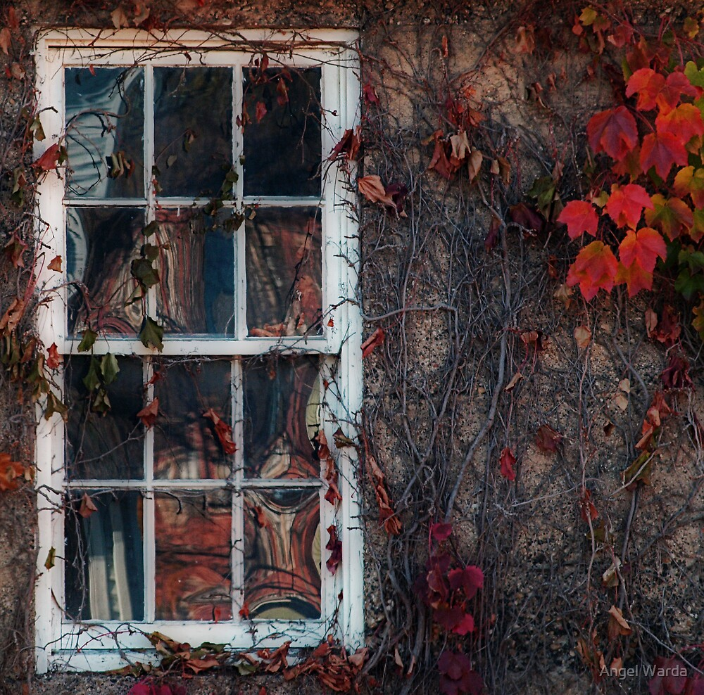 window by Angel Warda