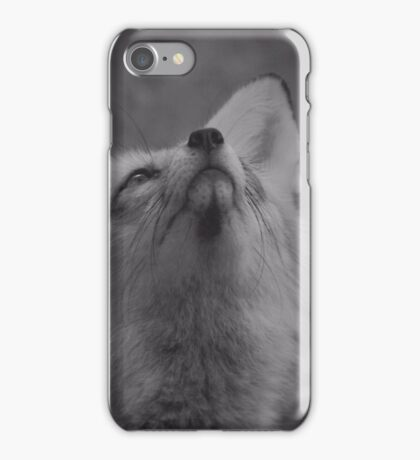 The fantastic mr fox iPhone Case/Skin