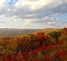 Autumn Splendor by Lisa G. Putman