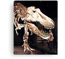 Tyrannosaurus Rex skull Canvas Print