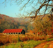 November Morning by Lisa G. Putman
