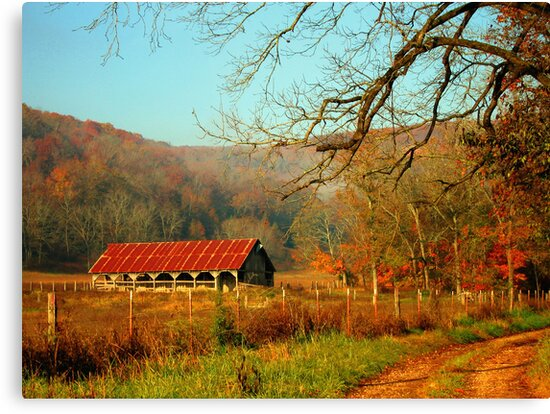 November Morning by Lisa G. Putman