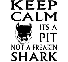 keep calm its a pit not a freakin shark Photographic Print