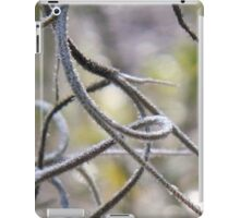 Spanish moss in macro with bokeh iPad Case/Skin