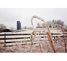 Frozen Farm Photographic Print