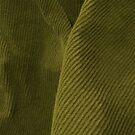 Green Corduroy by Stephen Thomas