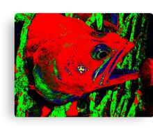 Vicious Fishes Canvas Print