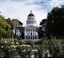 State Capital ~ California by NancyC