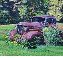 Betsey in the Sun, artist Lynn Garwood by Lynn Garwood