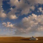 Palouse Serenity by Dan Mihai