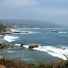 Laguna Beach by Mindy  Krummen