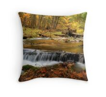 Autumn at the Jordan Cascades Throw Pillow