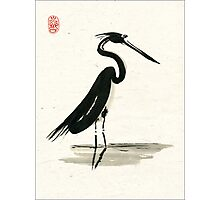 heron on rice paper Photographic Print
