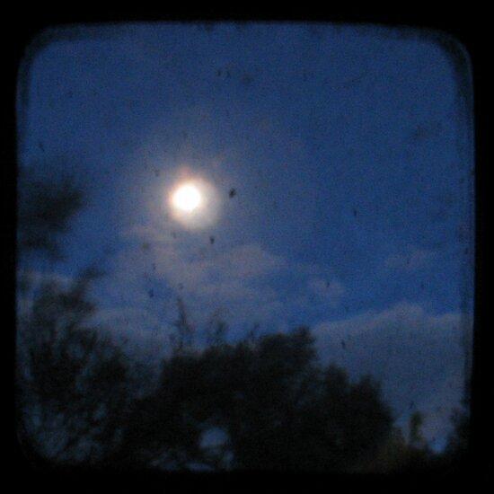 Night - Through The Viewfinder by Kitsmumma