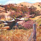 'Above Hughes Creek' by Lynda Robinson