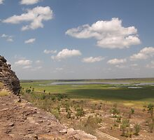 Kakadu Flood Plains,Kakadu National Park, by Lisa Evans