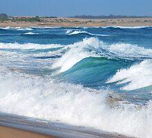 Shore Break - Stockton Beach NSW by Bev Woodman