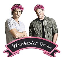 Winchester Bros. by castielbitches