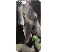 Elephant and delectable watermelons  iPhone Case/Skin