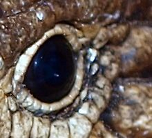 Reptilian Eye by Clive