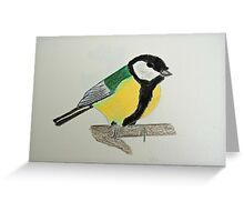 Great Tit Coloured Pencil Drawing Greeting Card