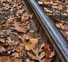 The Tracks of Fall by EbelArt