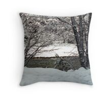 Snowy River Side Throw Pillow