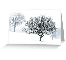 secluded silver lining....... Greeting Card