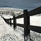 Fence line by VLFatum