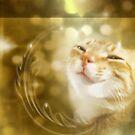 The Wonderfulness of Me by Christina Brundage