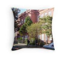 French Quarter Elementary School Throw Pillow