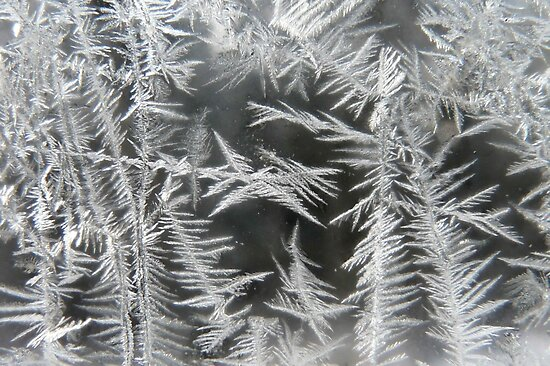 Frosty Feathers of Ice by MaeBelle