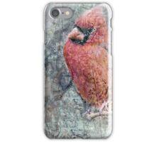 Cardinal Composite iPhone Case/Skin