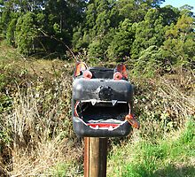 Tasmanian Devil  by Judy O'Neil