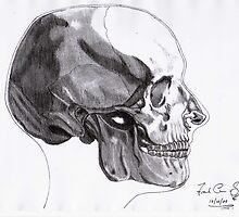 Skull  by Eugene Francis Cummings