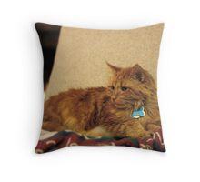 Fireside Cat Throw Pillow