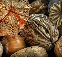 Autumn Medley by Ann Garrett
