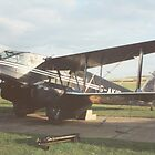 DeHavilland Dragon Rapide by Edward Denyer