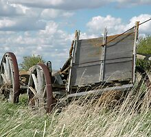This Old Wagon by Jerry Walter