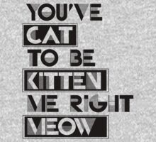 You've cat to be kitten me right meow by shirtual