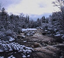 Adirondack Winter Brook by Scott Edwards