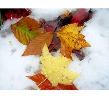 Autumn's First Snow Photographic Print